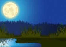 Natten landskap royaltyfri illustrationer