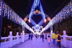natten på Sha Tin Festive Lighting Arkivfoto
