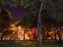Natten parkerar i almaty Arkivbild