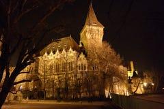 Natten sceen av den Vajdahunyad slotten, Budapest, Ungern Arkivbild