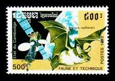 Natterer ` s棒Myotis nattereri,卫星、动物区系和技术serie,大约1993年 库存图片