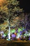 Nattfärgljus Fotografering för Bildbyråer