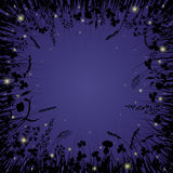 Nattgräs Arkivbild