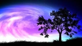 Natthimmel och trädögla royaltyfri illustrationer