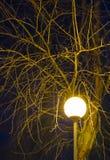 Nattlampa Arkivbilder