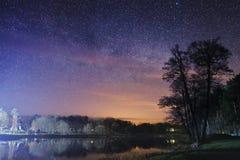 Nattlandskap av parkera med ett träd och en sjö i bakgrunden av den stjärnklara himlen Fotografering för Bildbyråer