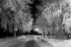 Nattlandskap i vintern Arkivbild