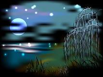 Nattlandskap med sjön och vasser i ljuset Royaltyfri Bild