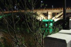 Nattlandskap vid floden arkivfoton