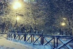Nattlandskapet i vinter parkerar Arkivfoto