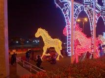 Nattljusshow Royaltyfria Bilder