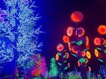 Nattljusshow Arkivbilder