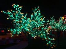 Nattljusshow Royaltyfri Bild
