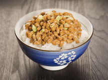 Natto,日语发酵了大豆,在米 库存照片