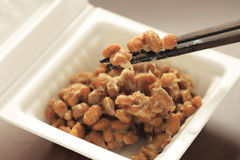 Natto Royalty Free Stock Photo