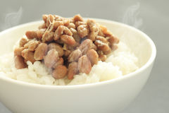 Natto Foto de Stock