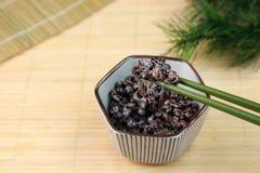 Natto preto do feijão de soja Imagem de Stock Royalty Free