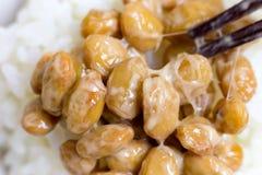 Nattou, sojas fermentadas imagen de archivo libre de regalías