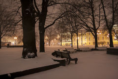 nattpetersburg st Royaltyfria Foton