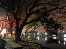 Nattplats av en sjö Royaltyfri Fotografi