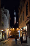 Nattsikt av den Tallinn staden Arkivbilder