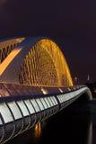 Nattsikt av den Troja bron från floden Vltava, Trojsky mest, Prague, Tjeckien Fotografering för Bildbyråer