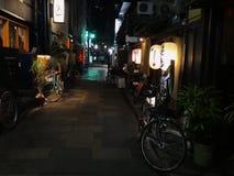 Nattsikt av det charmiga Pontocho området som lokaliseras i Kyoto, Japan royaltyfri fotografi
