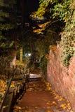 Nattsikt av Heidelberg den gamla staden med smala gator royaltyfri bild