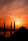 Nattsikt av moskén, Istanbul Royaltyfri Bild