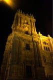 Nattsikten av den Malaga domkyrkan Arkivbilder