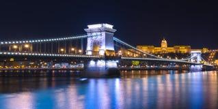 Nattsikten av lejonbron för den Chain bron reflekterade i Danubet River, Budapest Arkivfoton