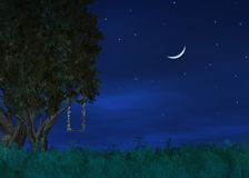 nattskies Royaltyfria Foton