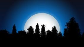 Nattskogkontur med månen Arkivfoto