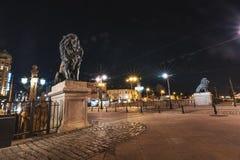 Nattskott av lejonbron i Sofia Bulgaria fotografering för bildbyråer