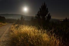 Nattsommarlanscape med vägen Arkivbild