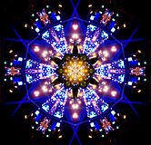 Nattstadssnöflinga Royaltyfri Foto