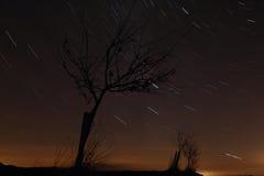 Nattstjärnor Arkivfoton
