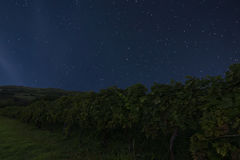 Nattvingårdbakgrund starry nattsky Natthimmel med stjärnan Arkivfoto