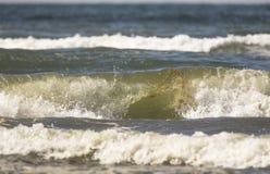 Natuer große Welle Stockfoto