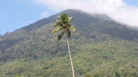 Natuna góra Fotografia Royalty Free