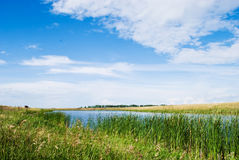 Natur And River Royalty Free Stock Image