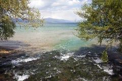 Natur auf See Ohrid macedonia stockfoto