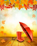 Natur Autumn Background With Colorful Leaves Stockbild