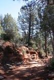 Natur av Arizona Arkivfoton