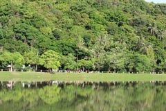 Natur av den Thailand den lösa skogen och sjön royaltyfria foton