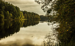 Natur av Finland Arkivbild