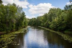 Natur av Kiev Arkivbilder