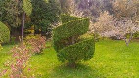 Natur av madeiraön Royaltyfria Foton