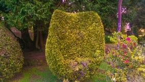 Natur av madeiraön Royaltyfria Bilder