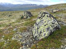 Natur av Norge Arkivbild